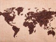 mondo chicchi caffè continenti
