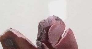 cacao dolomiti